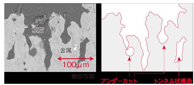 DLAMP接合の断面写真